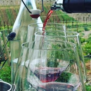 California Pinot